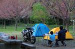 2008/04/20~21キャンプオフ
