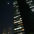 051-都庁へと歩く