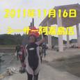 20101116v001