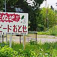 20120826n013