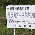20130918n004