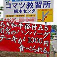 20130525n002