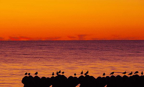 S660 北海道ツーリング ノシャップ岬 夕陽 マジックアワー