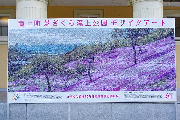 S660 滝上町 芝桜モザイクアート